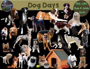 Dog Clip Art Real Clips Photo & Artistic 64 image Set