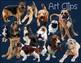 Dog Clip Art Real Clips Photo & Artistic 64 image Set