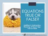 Equations True or False