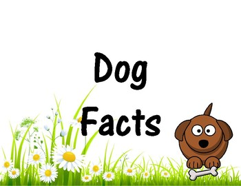 Dog Facts + Dog Project