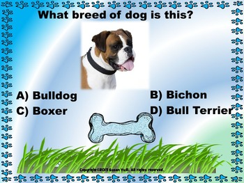 Dogs - PowerPoint Game