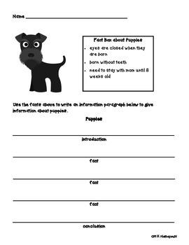 Doggone Great Information Writing!