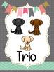 Dog Musical Groupings