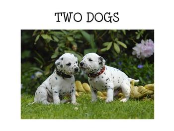 Dog Poem Book