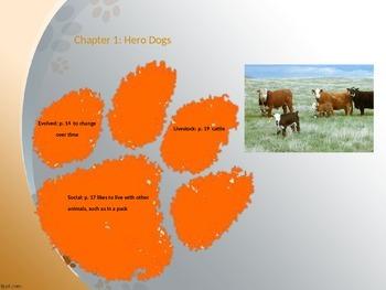 Dog Unit PowerPoint: Magic Tree House, Stone Fox