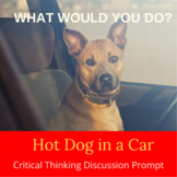 Dog in a Hot Car Critical Thinking Activity