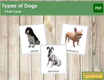 Dogs: 3-Part Cards