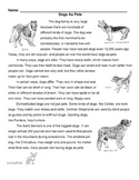 DOGS AS PETS Mini Lesson w/ 12 Read Comp Qs: Read for Details & Vocabulary