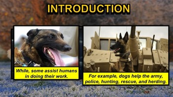Dogs - PowerPoint