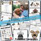 Dogs Preschool Unit - Printables for Preschool, PreK, Homeschool Preschool