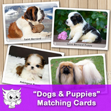 Dogs & Puppies. Matching cards