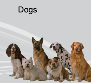 Dogs - Vocabulary and Conversation Lesson (ESL Lesson Plan)