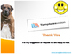 Dogs and Cats PPT Template