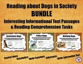Reading About Dogs in Society BUNDLE: Informational Text P