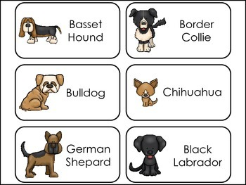 Dogs themed Picture Word Flash Cards.