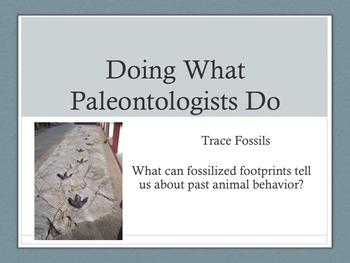 Doing as Paleontologists Do