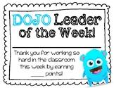 Dojo Leader Certificates/Display