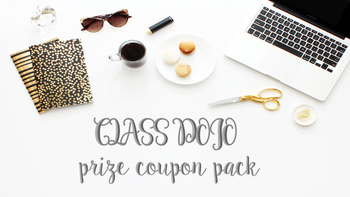 Class Dojo Prize Pack★