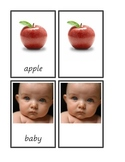Dolch Common Nouns A-C 3-part cards