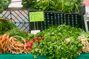 Dollar Stock Photo 135 Produce: Carrots, Radishes, Green Onions