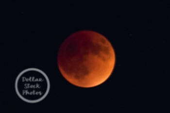 Dollar Stock Photo 138 Lunar Eclipse