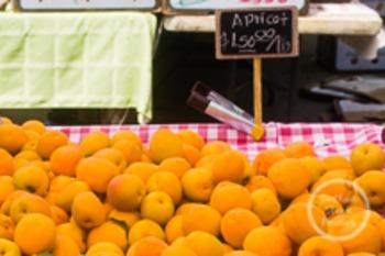 Dollar Stock Photo 160 Apricots