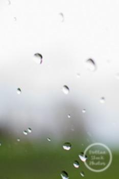 Dollar Stock Photo 180 Rain Drops Tall