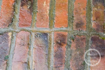 Dollar Stock Photo 185 Bricks