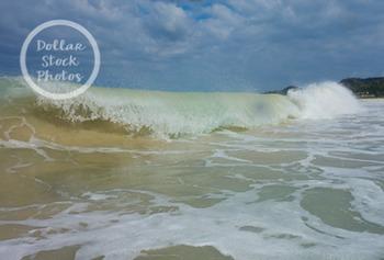 Dollar Stock Photo 287 Ocean Wave