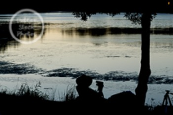 Dollar Stock Photo 33 Bird Watching on a Lake