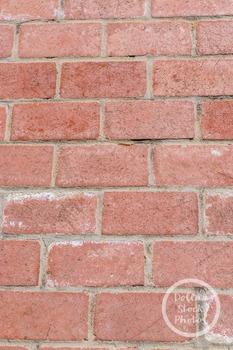 Dollar Stock Photo 341 Brick Texture Tall
