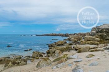 Dollar Stock Photo 52 Ocean from a Rocky Beach