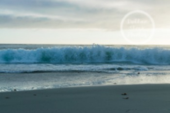 Dollar Stock Photo 55 Ocean Wave