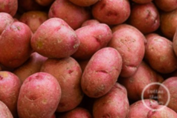 Dollar Stock Photo 84 Red Potatoes