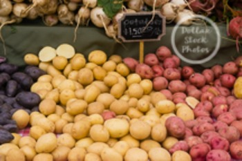 Dollar Stock Photo 94 Red and White Potatoes