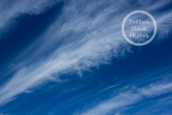 Dollar Stock Photo 98 Cirrus Clouds