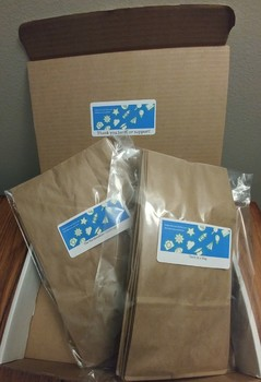 Dollar Store STEM: Tech in a Bag (Shipped Hard Goods)