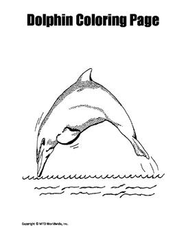 Dolphin Coloring Page Trio