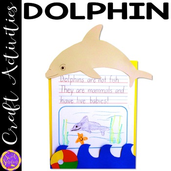 Dolphin Craft