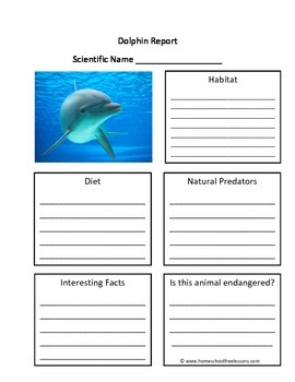 Dolphin Fill in the Blank One Page Animal Report