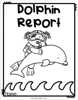 Ocean Animal Research / Report / Dolphins