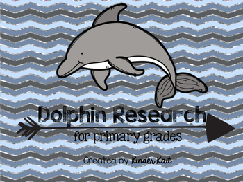 Dolphin Research
