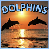Dolphins - PowerPoint & Activities