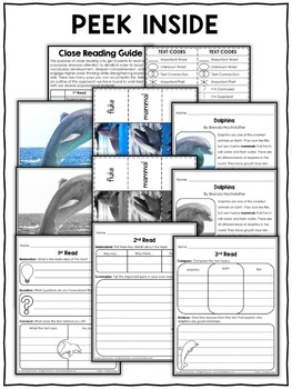 Close Reading Passage - Dolphin Activities