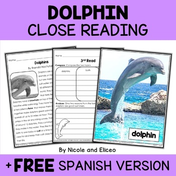 Close Reading Dolphin Activities