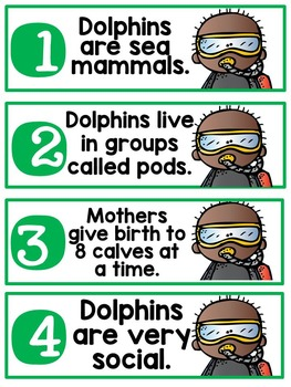 Dolphins {A Complete Nonfiction Resource}