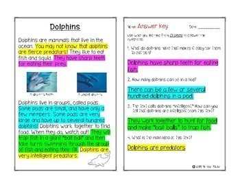Dolphins Informational Text with Comprehension Questions