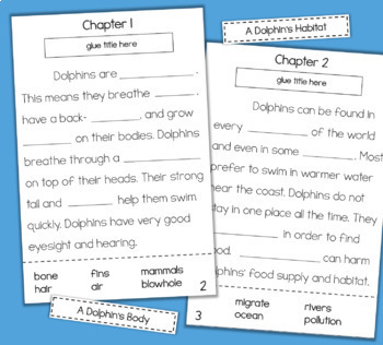 DOLPHINS Interactive Reading Comprehension Activity 2nd Grade 3rd Grade