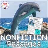Dolphins Nonfiction Guided Reading Comprehension and Fluency Passages