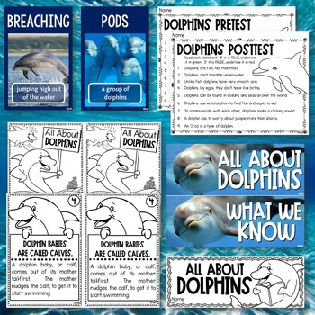 Dolphin Science Unit for Young Learners